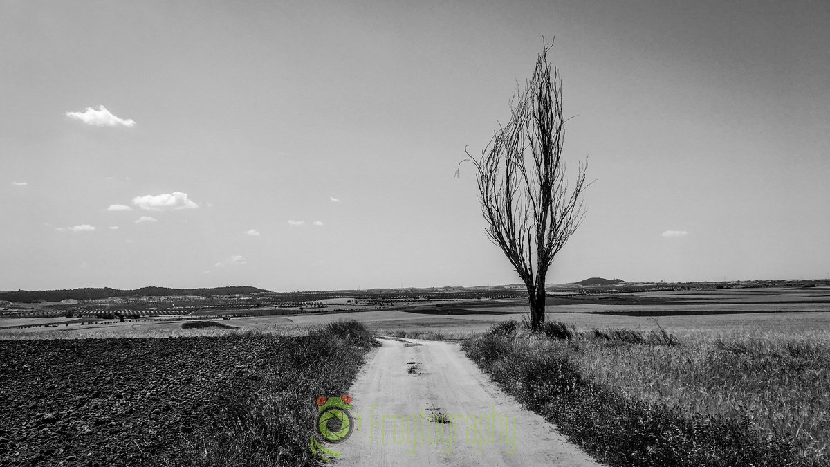 A Long Way #nature #sky #sun #photography #travel #photo #love #photooftheday #clouds #landscape #art #bw #blackandwhite #bandw #picoftheday #naturephotography #life #naturephotography #naturelovers #naturelover