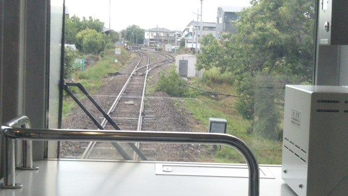 線 倒木 横浜