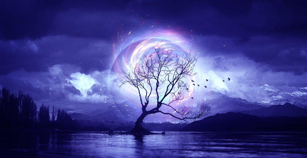 Image: 'The Tree 2' by Elena Dudina