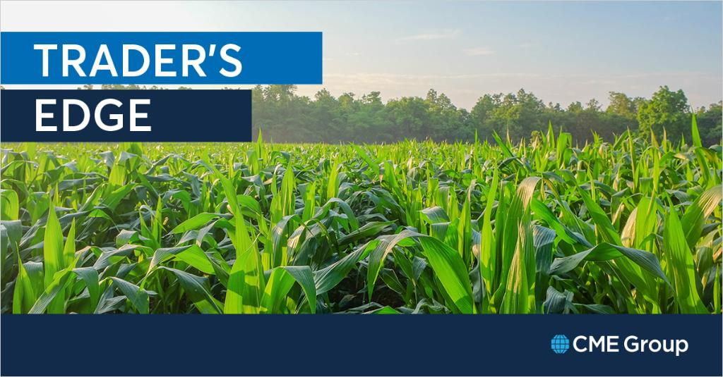 On today's Trader's Edge, Dave Lerman explores extreme rainfall in the Corn Belt, its impact on Corn futures volatility, and how to adjust trades with USDA crop reports and G20 meetings on deck in late June. http://spr.ly/6018Eovn0
