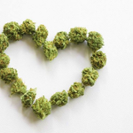 Image for the Tweet beginning: How do feel about #cannabis?