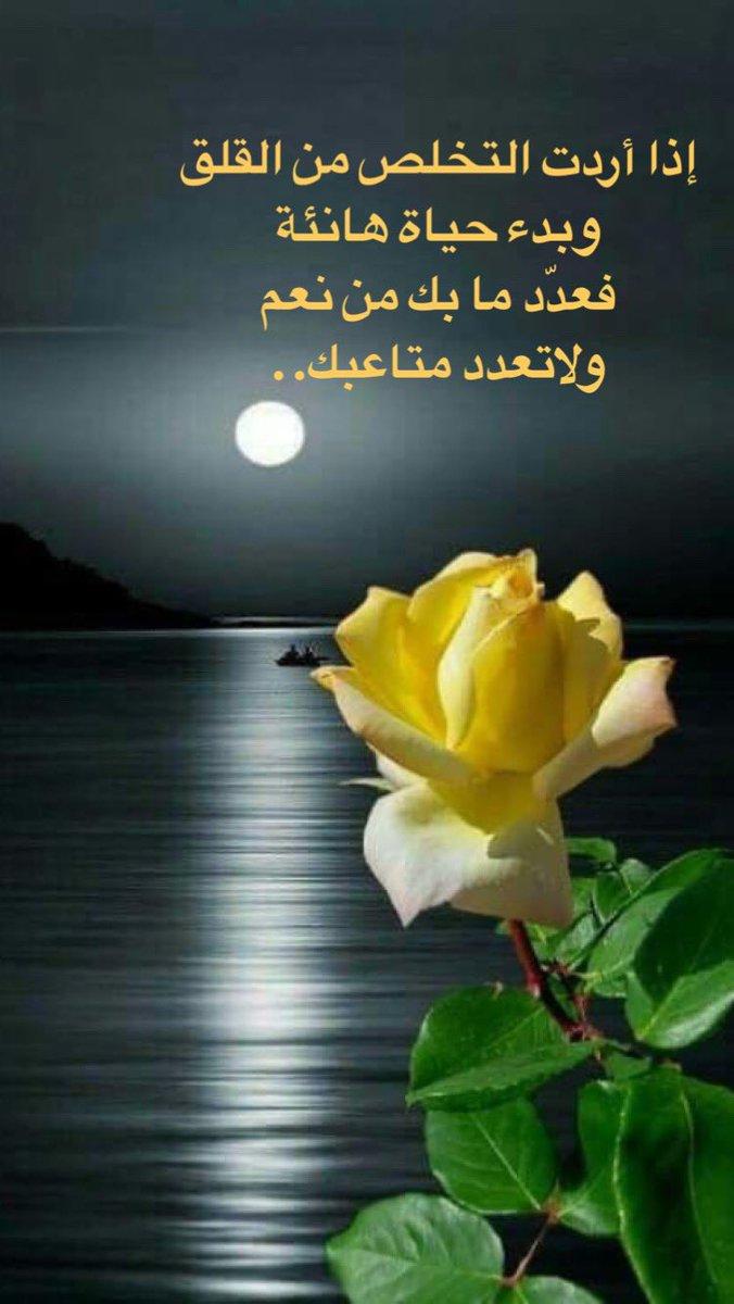 المصراوية - صفحة 91 D8wR2d0W4AAzpPL