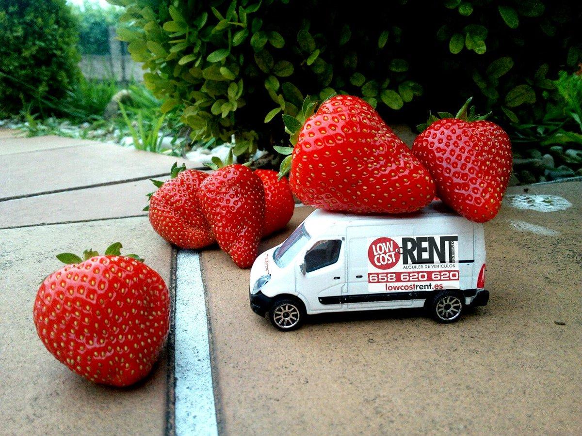 Si las fresas son fresones, variedad de turismos y de furgones 🤪 😉 Haz ya tu reserva. 👇 http://reservas.lowcostrent.es/ #liberateconLowCostRent #Ponteareas #Vigo #Peinador