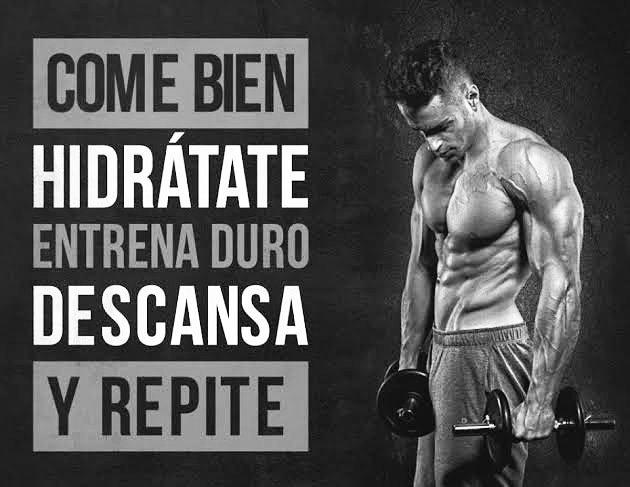 Motivacion Gym Wpawpartco