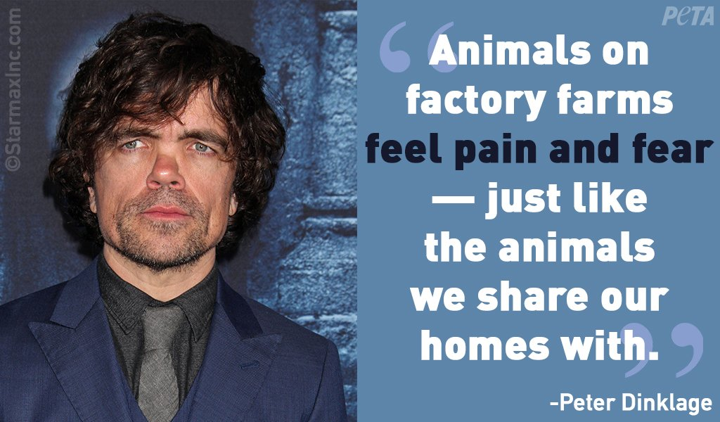test Twitter Media - He's talented, he's compassionate, and he's #veg. The #GOT actor never misses an opportunity to speak up for animals! Happy Birthday to one of the kindest people in #Hollywood, Peter Dinklage 💙 https://t.co/i72m3ia9gl