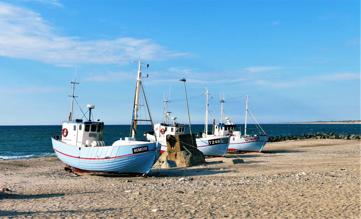 I live in a picturesque corner of the world. Near my home, fishing boats are still pulled up onto the beach and a bit further down, the old nazi bunkers still there to remind me what my freedom is worth. 🌹