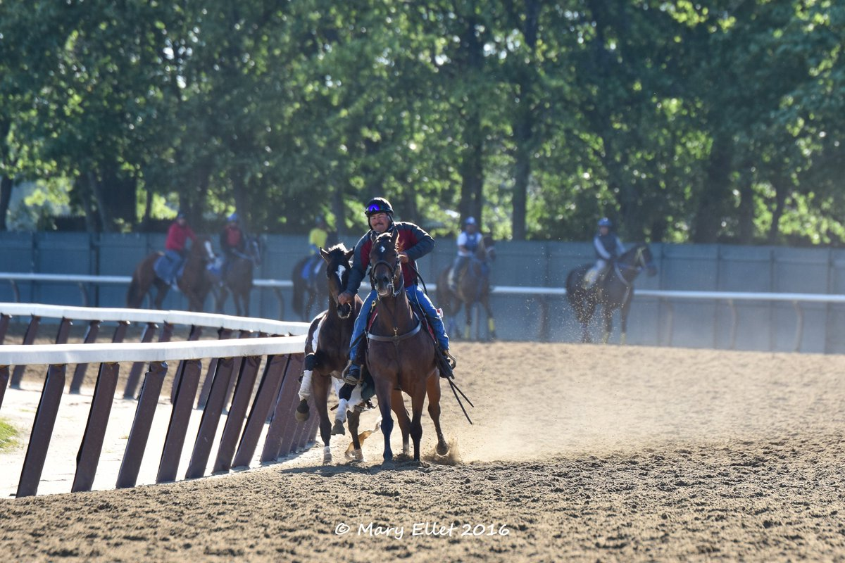 Belmont week reminded me of these photos I took in 2016 of this *slight* tack malfunction. Outriders have such an important job on the track (not even saying that because I'm an outrider's daughter).