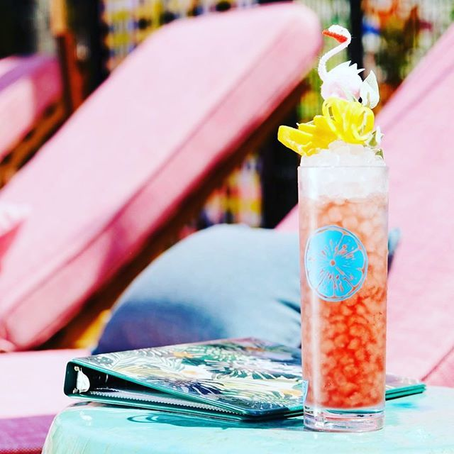 Afternoons by the pool @brokenshaker 🍹🍹 | #regram #brokenshaker #aaaliquorlicenseconsulting . . . . . #liquor#wine#cocktails#foodporn#restaurant#beer#losangeles#catering#events#bar#foodie#foodgram#instafood#instagood#potd#cheflife#chefmode#drinks#bar…