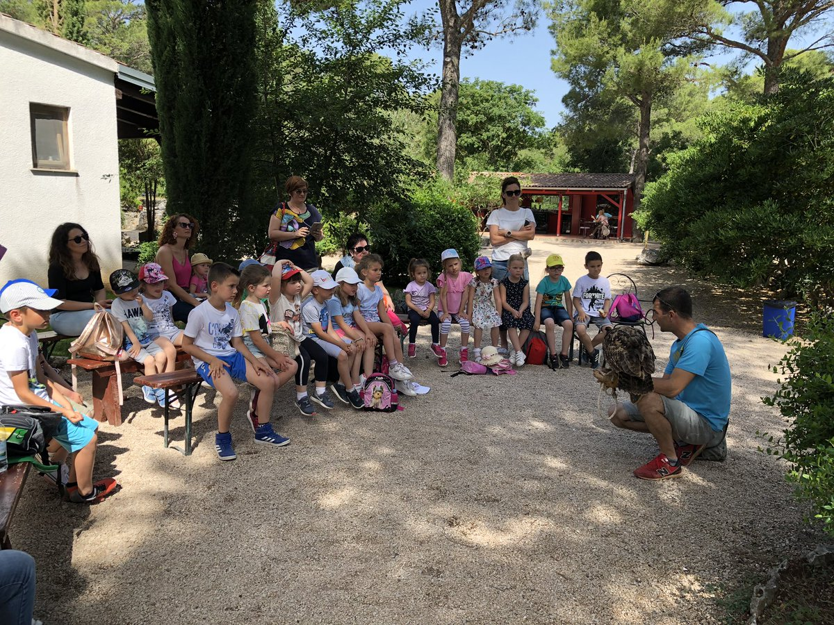 Learning with #children about #eagleowl and #falcon in #falconrycenter near #šibenik #environment #preschool #nature #croatiapic.twitter.com/bUbCaLnJkt