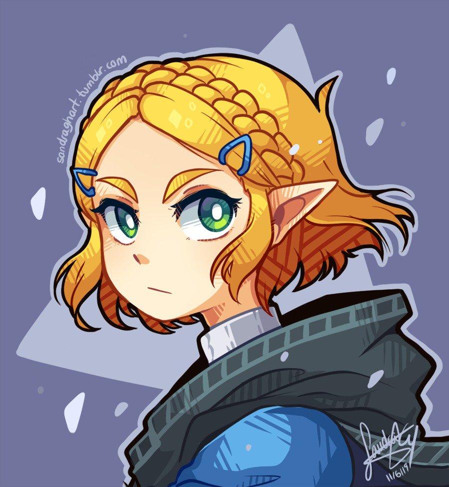 Needed to do this because she deserves everything 🙏💕💕 #Zelda #Botw #NintendoDirect