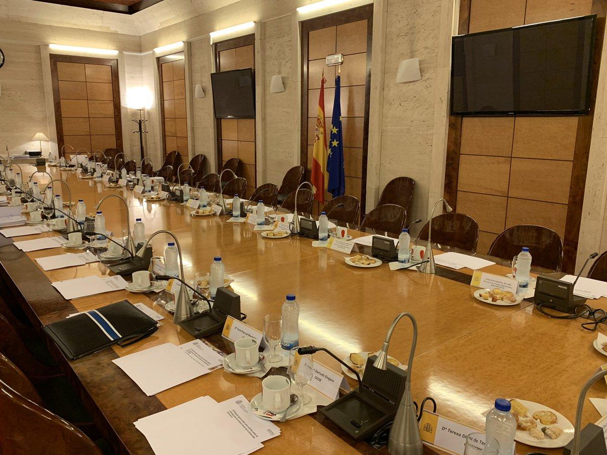 test Twitter Media - Todo listo y a punto de comenzar la reunión con la Ministra Carcedo @sanidadgob en el Consejo General @Imserso  @AESTE_oficial @Grupo_SENDA @CEOE_ES @cea_ps https://t.co/ct94rVQioy