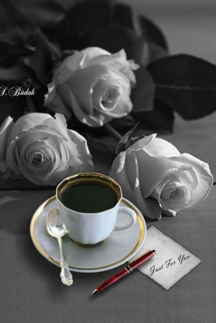 Good morning happy Wednesday tweet hearts have a wonderful day with love and fun 💕☕☀️💐🌸💮🌹🥀🌺🌻🌼🌷🌿🌴🐞🐝🦋😘😘