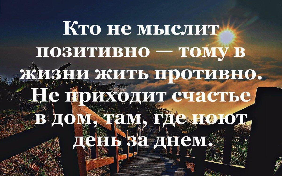 Мудрости картинки