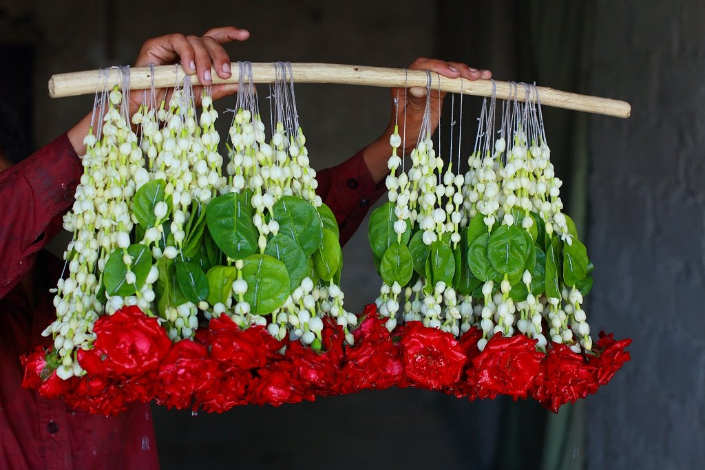 Plants & Nations: Pakistan #BeijingExpo #HorticulturalExpo http://bit.ly/2WY8AFM