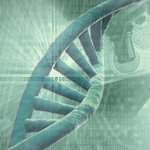 Image for the Tweet beginning: Have questions about genetic counseling