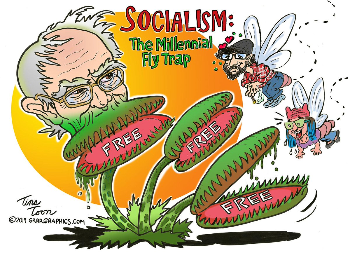 """According to @HarrisPoll, among 18-24 year-olds, """"59% supported @BernieSanders."""" #Millennials and #GenZ beware: unsustainable #socialist policies like ones that promise """"free"""" #college and #healthcare are destined to fail. Just look at #Venezuela. #TinaToon <br>http://pic.twitter.com/1WQfJvCmXI"""