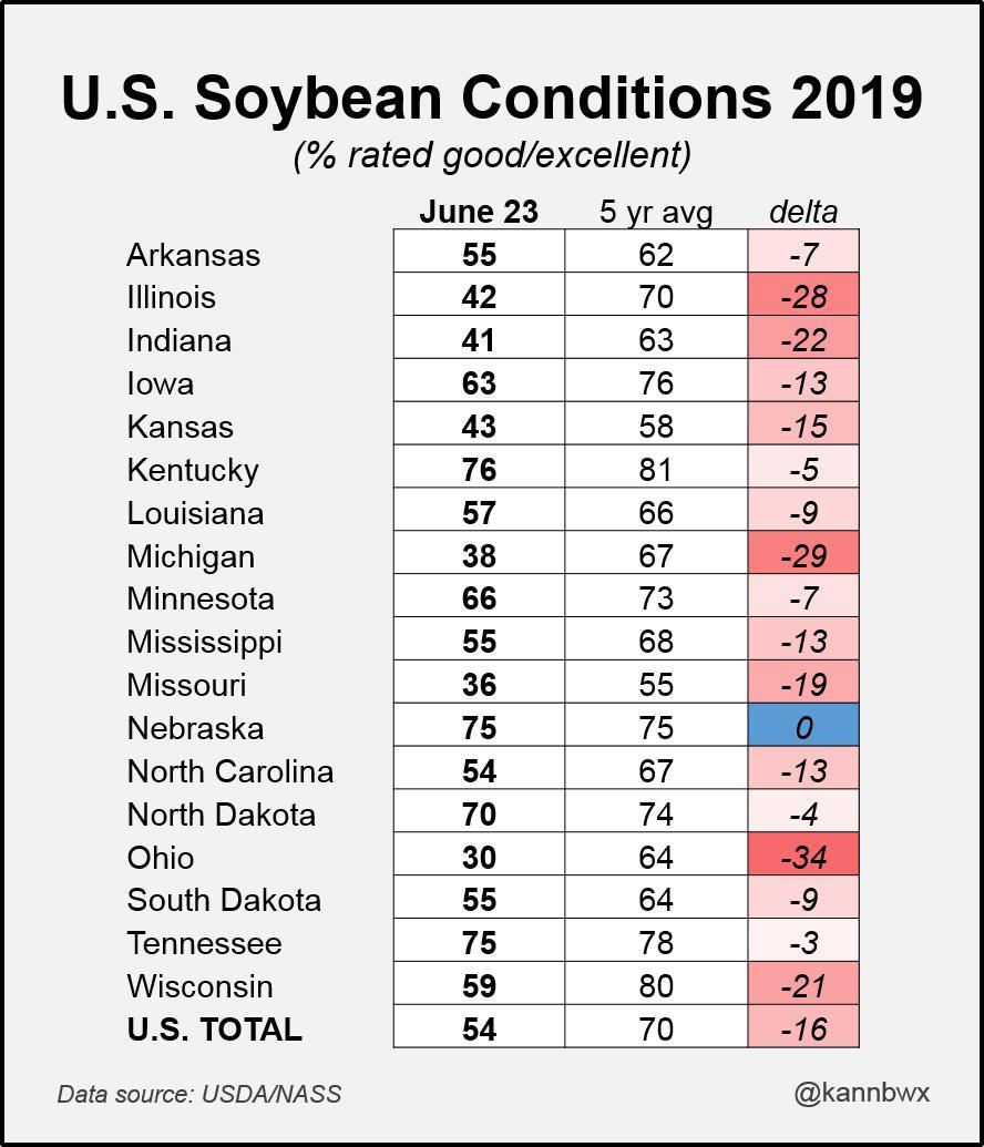 Lavoura americana de soja em condicões ruins nesse inicio de safra. Favorável para preço e para produtores fora dos EUA. #soybeans