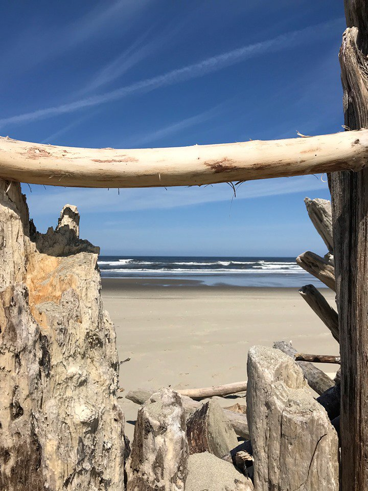 Happy Monday from Florence! How about a stroll on the beach? This was this morning's view. Thank you Mary McCarthy for sharing your pics! #DogWalking #LetsGoHiking #Driftwood #OregonCoast #FlorenceOr #LetsGoFishing #Crab #Chowder plan your getaway at  http://FlorenceChamber.com