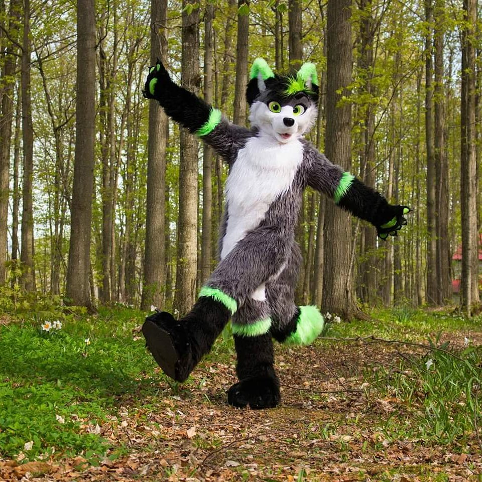 Every adventure starts with one foot in front of the other  #furry  #furries #fursuit #furryfandom <br>http://pic.twitter.com/nOxUUnzO8w