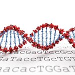 Image for the Tweet beginning: Considering taking a #DNA test?