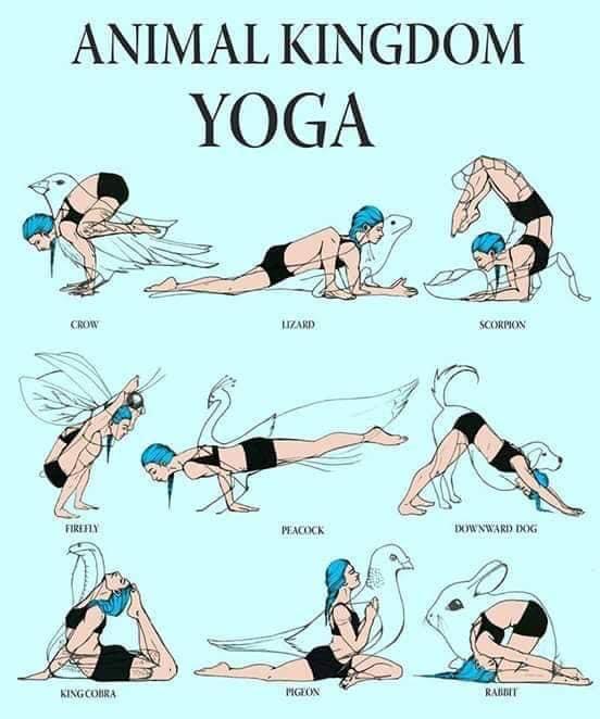 nombres de las asanas de yoga