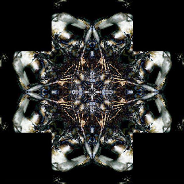 From the Transflexions Series... #transflexions #biomorphic #hrgiger #bodyart #bodypainting #digitalart #kaleidoscope #medallion #mandala #biomechanical #mandalas #mandalasworld #mandalaart #mandalastyle #surreal #surrealism #kaleidosaturday #beautiful_m… http://bit.ly/2xa1oHk