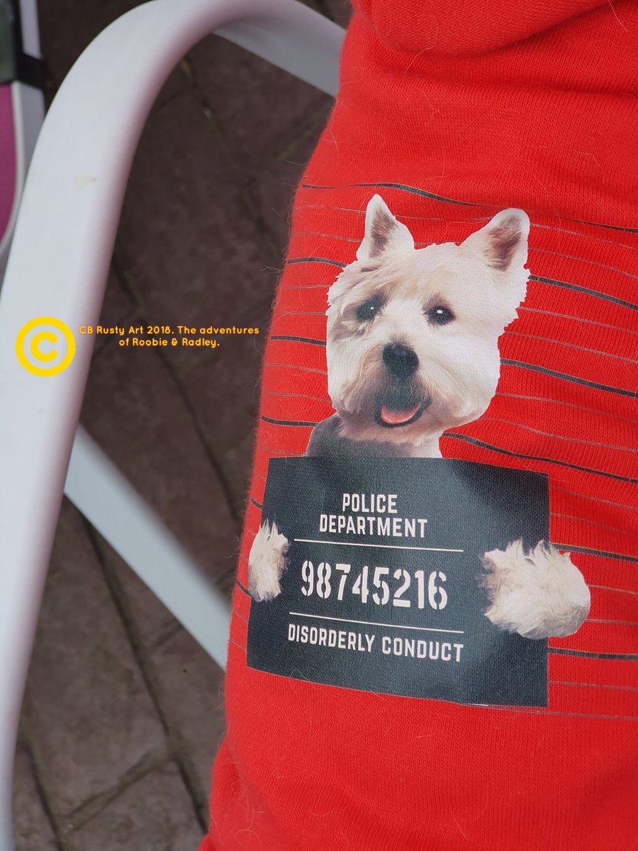 Just to let yooo all know...I have had a Police Caution for Disorderly conduct at the Vet yesterday... #ZSHQ #TheAdventuresofRoobieandRadley #Westie #Police  #FurryTails #dogsoftwitter <br>http://pic.twitter.com/3875yFNYLo