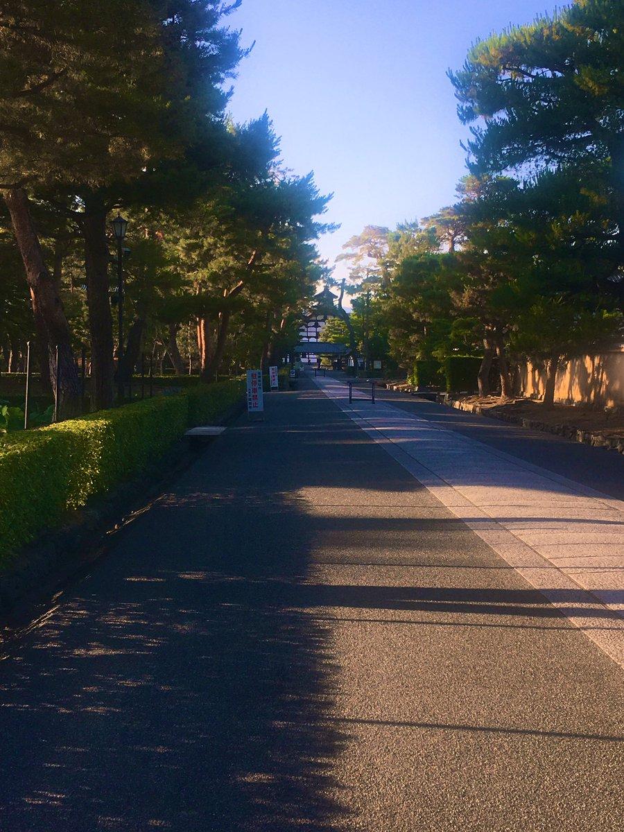 My way home #Kyoto #Japan #Summer #京都 #日本 #夏 https://t.co/61oUMwToRo