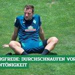Image for the Tweet beginning: #Werder-Profi Philipp #Bargfrede nimmt sich