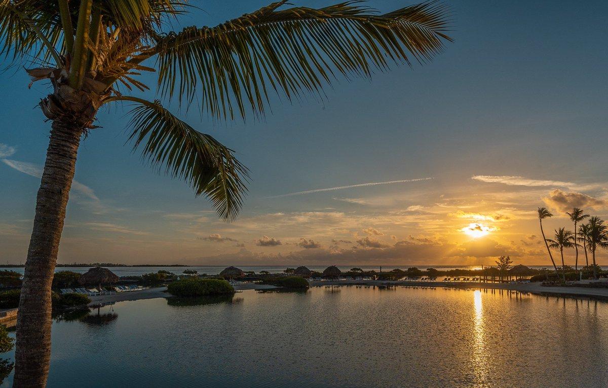 Good morning, #Florida! #LoveFL <br>http://pic.twitter.com/xgGBEVkd09