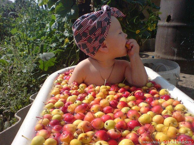 Сделать, яблочные картинки смешные