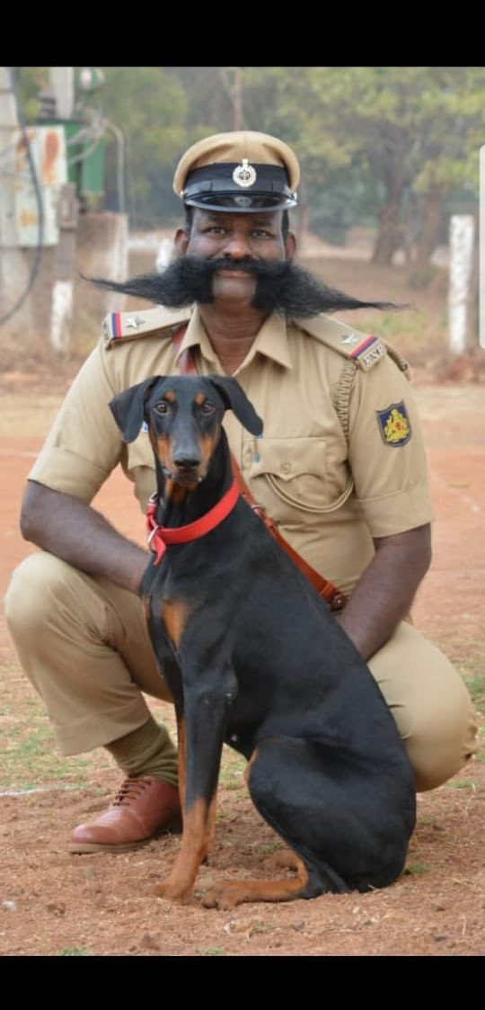 We are Proud of our colleagues Astt Sub Inspector, Ramesh and Member Canine Deepa. Both are serving at the upper most part of our State at Bidar.They perform VIP Duties, Drugs& Explosives detection and Crime Sniffing and Tracker Jobs..