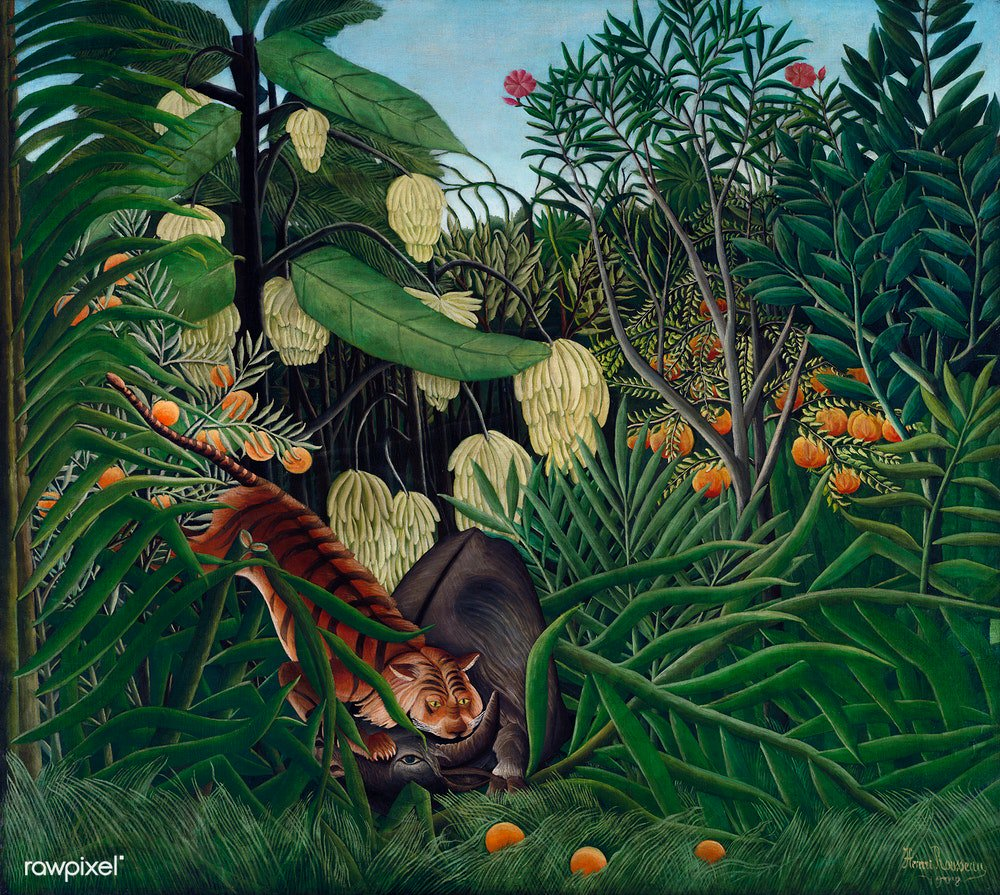 Fight between a Tiger and a Buffalo (1908) by Henri Rousseau. Original from The Cleveland Museum of Art. Digitally enhanced by rawpixel. Download this image: http://rawpixel.com/board/1054552/henri-rousseau…