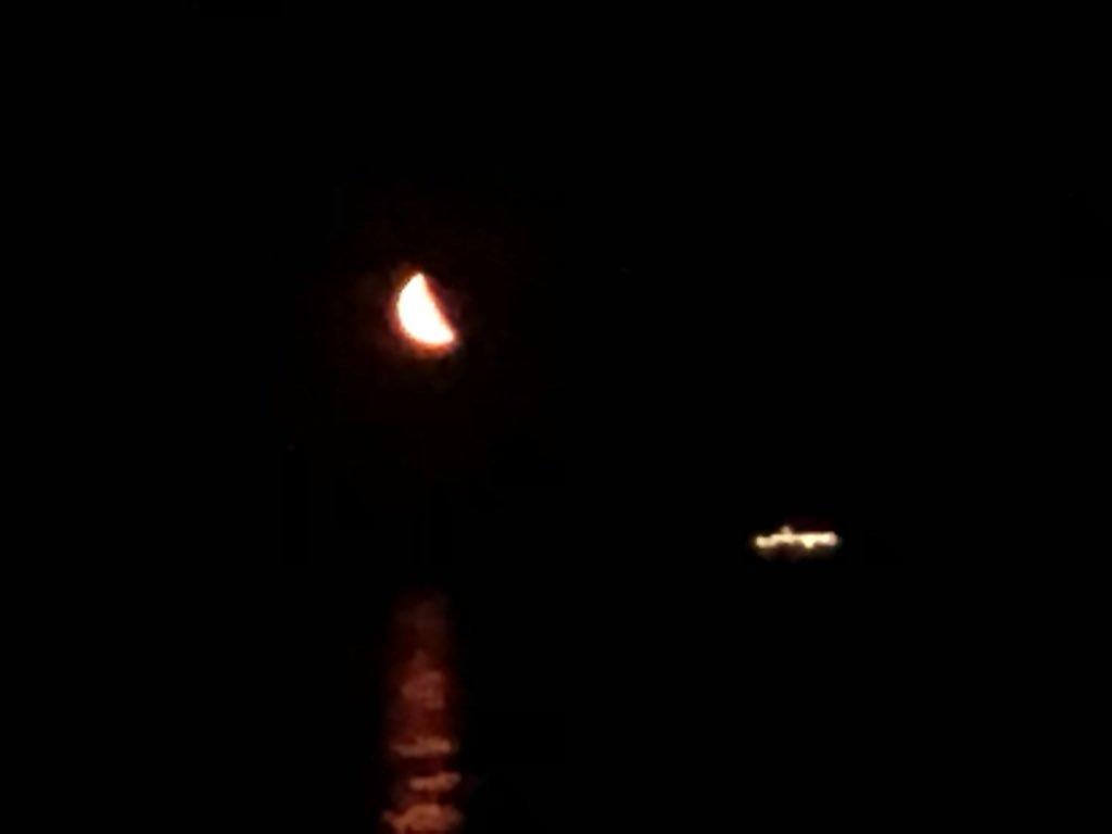 Tonight is a bewitching moonlit night🌙  今夜は妖艶な月夜です!  #moonlight #pacificocean #japancoast #officer #sailor #seamenslife #roroship #rorovessel #carcarriervessel #lifeonship #月夜 #太平洋 #日本沿岸