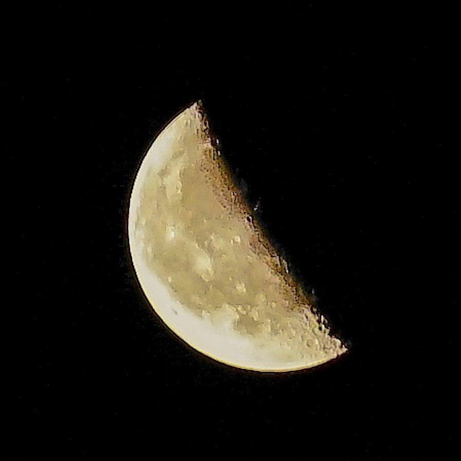 下弦の月があがりましたね  撮影をしてたら 何やら物音が… 猫が近くにいたのでお友達の猫?かと思ったらアライグマが出て来てお互い目があってびっくりした夜  おやすみなさい  #イマツキ #横浜 #工場夜景 #月 #夜景 #下弦の月 #MoonLovers #α7II #photography #Moonlight #photographylover #moon
