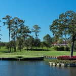 Image for the Tweet beginning: Spotted: @TPCSawgrass, @tpcdanzantebay, & @TPCCartagena