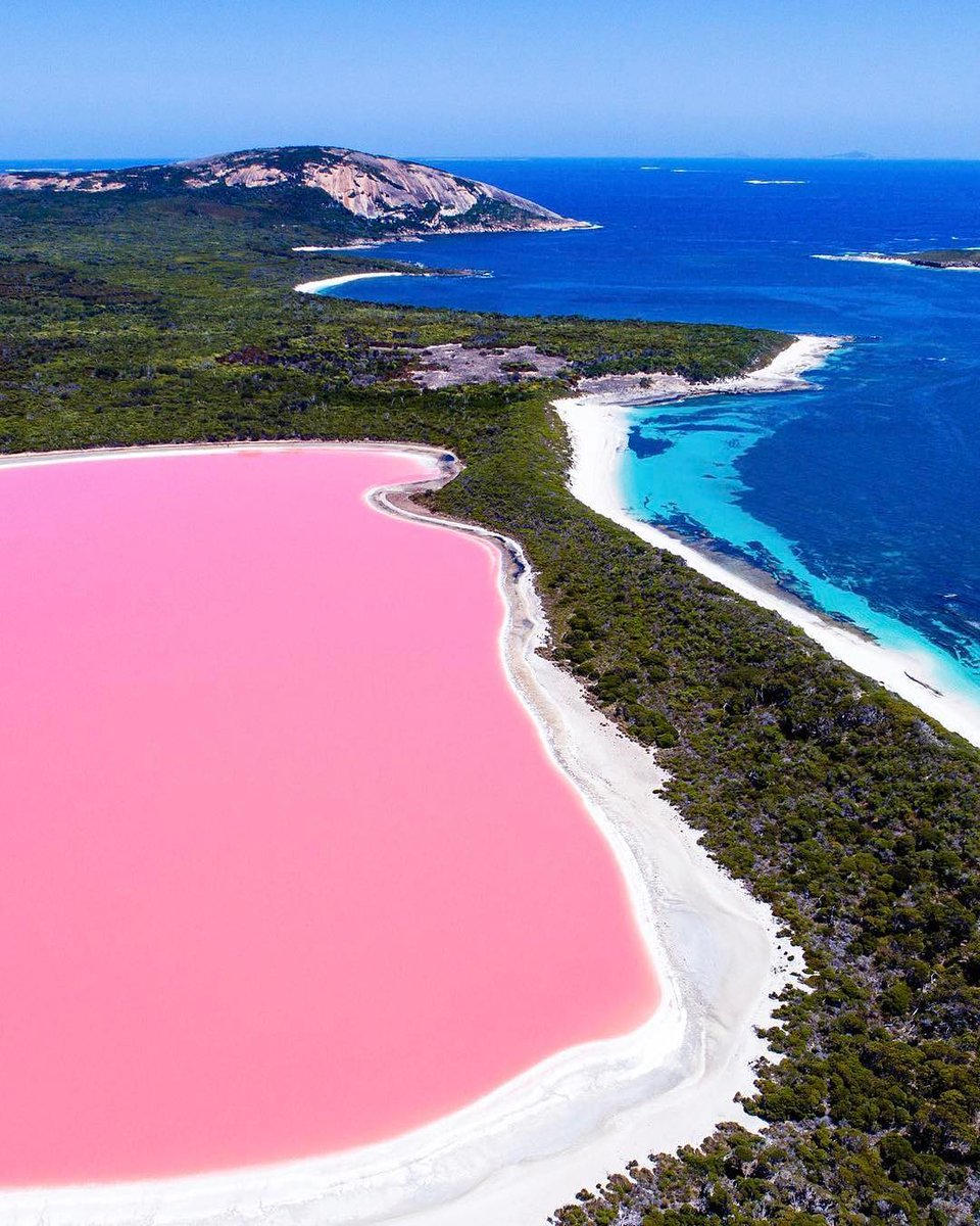 No, it's not photoshop. No, it's not the Pink Lake located in Esperance. This is Lake Hillier and it's located on Middle Island, accessible by scenic flight or cruise!Yes, it is this pink all year round! Yes, a trip here really will make your friends jealous! Pic: IG/saltywings https://t.co/xHXcepSX5s