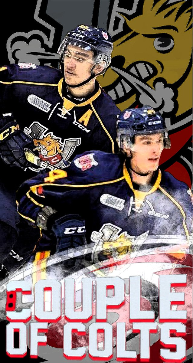 RT @ryannoble66: Have I mentioned how happy I am that both Suzuki and Svechnikov are @NHLCanes? @OHLBarrieColts https://t.co/WOzyIdIcmL