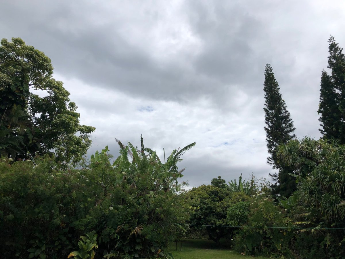 test Twitter Media - Overcast and humid in Haiku. #cmweather #Maui https://t.co/Au1AJrPv8Y