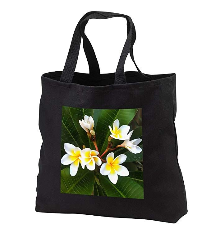 http://Amazon.com:  #AcrylicPainting #Frangipani #Blossom #ToteBag 14w x 14h x 3d #ToteBags are perfect for #schoolbags, #grocerybags, or #beachbags. #Jumbotote available in black only. #Standardtote. @3DRose #ATSocialMedia  https://www.amazon.com/3dRose-Taiche-Painting-Frangipani-tb_315653_1/dp/B07SSJH36H/ref=sr_1_22?keywords=3dRose+315653&qid=1561368729&s=gateway&sr=8-22…