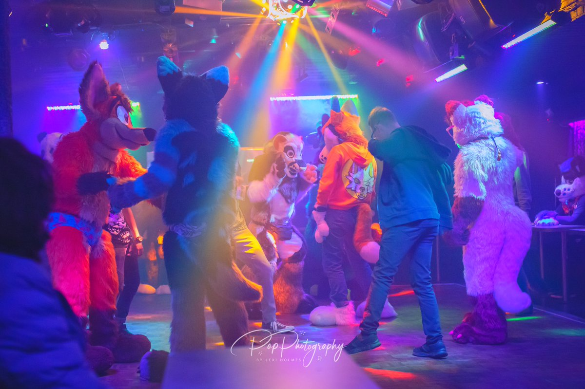 This is the world we live for. Wild colors and fluffy animals   : @BooblesFennec  : @tail_party  #Furry #FurryFandom #Fursuit #Fursuiter #Fursuiting #TailParty<br>http://pic.twitter.com/Qf928hAJUO