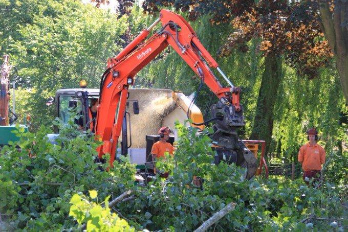 Collegevragen inzake bomenkap in Westland https://t.co/LdBnsWASos https://t.co/QjkdpkgmPR