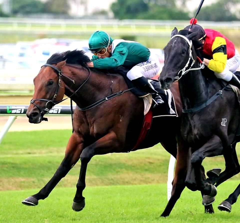 BROWNIE'S BLOG  http://www.horseracingonly.com.au/racing-article.aspx?id=3913… @SCTurfClub @tabcomau @horseracingonly