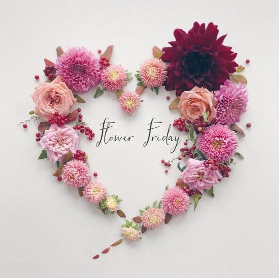 Where flowers bloom, so does hope   ~Lady Bird Johnson~  #FridayThoughts #HappyFriday<br>http://pic.twitter.com/p7ffONyVCI
