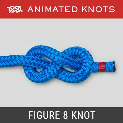 "Image of blue rope tied into a Figure 8 knot , with the text ""Animated knots"" and ""Figure 8 Knot"""