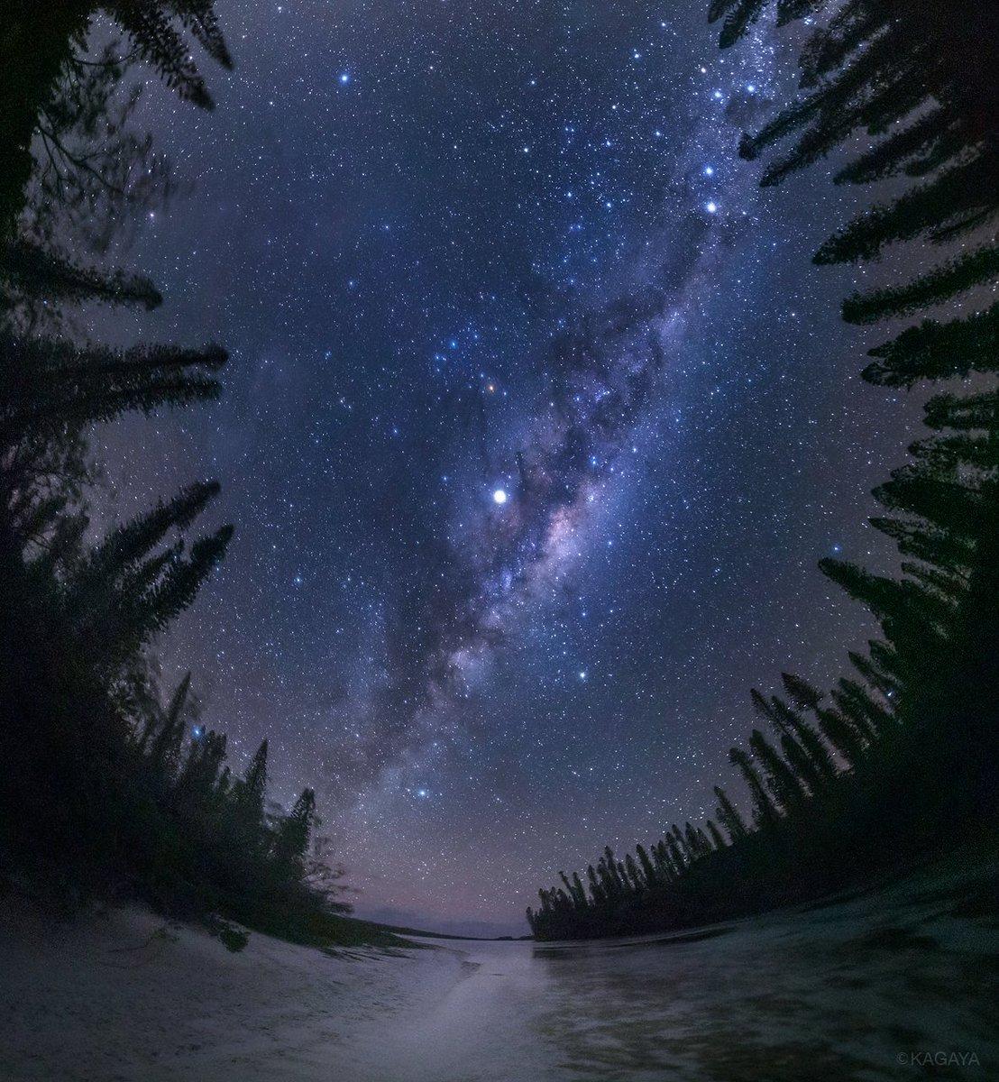 見上げれば、私たちの天の川銀河。 (先月、ニューカレドニアにて撮影) 今週もお疲れさまでした。おだやかな週末になりますように。