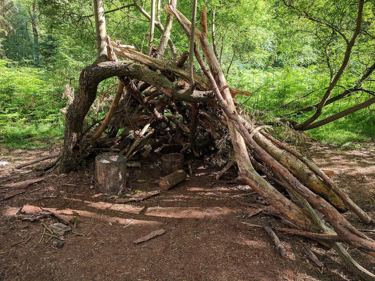 Looking for something fun to do with the family this weekend? Why not head to our nearby #CannockChase and build a den?! 🐞🐛🦋🐝 #30DaysWild