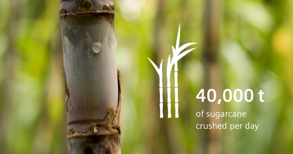 40,000t of sugarcane crushed per day are turned into #sugar and #greenenergy by our customer Mitr Phol – the largest sugar producer in #Thailand. Read their story: https://sie.ag/2U6MPgM