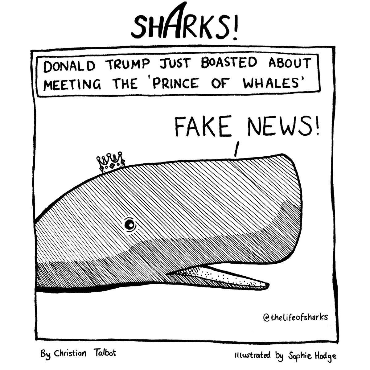 The Prince of Whales #PrinceOfWhales <br>http://pic.twitter.com/Xpq5PiegXS