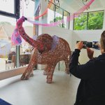 Lots of admiration for 'Bish', the willow elephant created by the children for Creative Arts Week. #creativeartsweek #spiritofindia #indianelephant #prepschoolsurrey #prepschool #LongacreLife